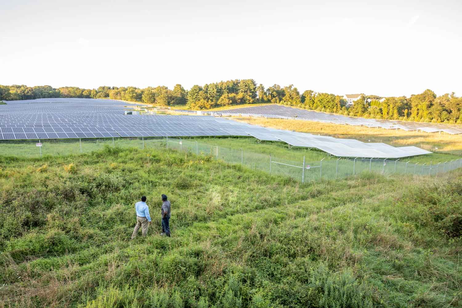 An aerial shot of Rob and Walter in a field looking over a large solar panel farm.